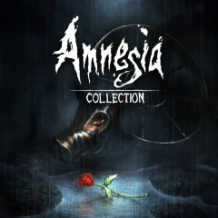 Amnesia: Collection (EU)
