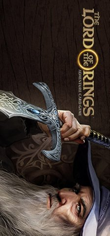 Lord Of The Rings, The: Adventure Card Game (US)