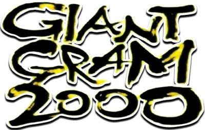 Giant Gram 2000: All-Japan Pro Wrestling 3