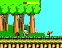 Wonder Boy (SMS)  © Sega 1986   5/6