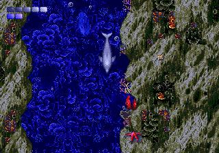 Ecco The Dolphin (SMD)  © Sega 1993   5/5