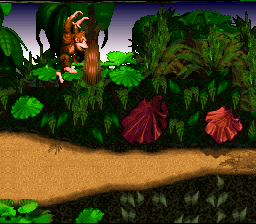 Donkey Kong Country (SNES)   © Nintendo 1994    4/6