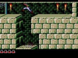 Prince Of Persia (MCD)  © Sega 1993   3/4