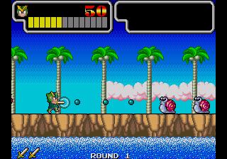 Wonder Boy III: Monster Lair (ARC)  © Sega 1989   11/11
