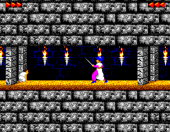 Prince Of Persia (SMS)  © Domark 1992   3/3
