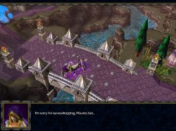 Warcraft III: Reign Of Chaos (PC)   © VU Games 2002    2/5