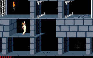 Prince Of Persia (PC)   © Brøderbund 1989    15/25