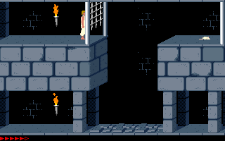Prince Of Persia (PC)   © Brøderbund 1989    18/25