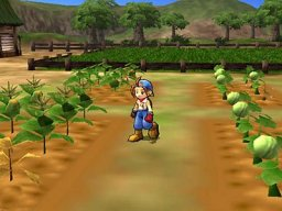 Harvest Moon: Save The Homeland (PS2)   © Crave 2001    1/3