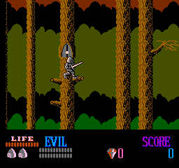 Wizards & Warriors (NES)   © Acclaim 1987    2/3