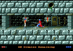 Prince Of Persia (SMD)  © Domark 1993   3/3