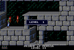Prince Of Persia (PCCD)  ©  1991   2/5
