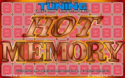 Hot Memory (ARC)  © Incredible Technologies 1994   1/3