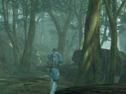 Metal Gear Solid 3: Snake Eater  © Konami 2012  (PS2)   2/4