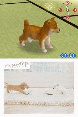 Nintendogs: Chihuahua And Friends (NDS)  © Nintendo 2005   2/3