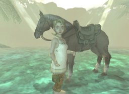 The Legend Of Zelda: Twilight Princess (GCN)   © Nintendo 2006    1/3
