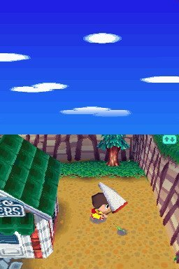 Animal Crossing: Wild World (NDS)   © Nintendo 2005    1/3