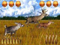 Extreme Hunting (ARC)  © Sammy 2005   1/3