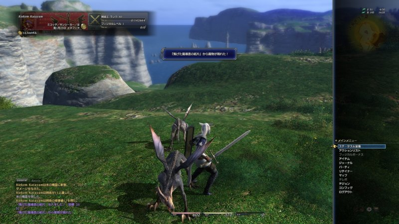 Final Fantasy XIV (PC)   © Square Enix 2010    13/17