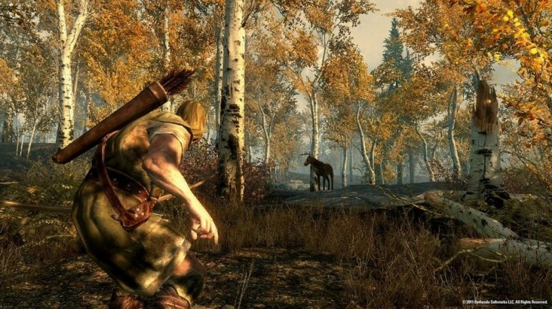 The Elder Scrolls V: Skyrim (PS3)   © Bethesda 2011    5/6