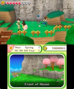 Harvest Moon: Skytree Village (3DS)  © Rising Star 2016   3/3