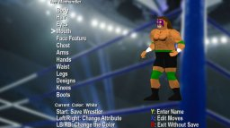 Action Arcade Wrestling (X360)   © Action 2010    3/3