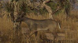 Pro Deer Hunting (PS4)  © PSR Outdoors 2020   3/3