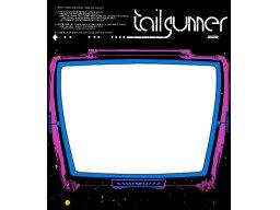 Tail Gunner (ARC)  © Cinematronics 1979   1/1