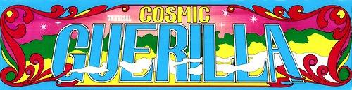 Cosmic Guerilla