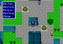 Phantasy Star II (SMD)  © Sega 1989   3/3