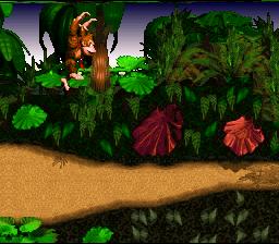 Donkey Kong Country (SNES)  © Nintendo 1994   4/6