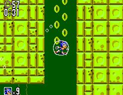 Sonic The Hedgehog 2 (SMS)  © Sega 1992   8/12