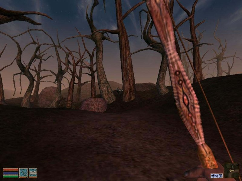 The Elder Scrolls III: Morrowind (PC)  © Ubisoft 2002   5/6