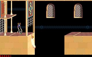 Prince Of Persia (PC)  © Brøderbund 1989   12/25