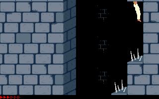 Prince Of Persia (PC)  © Brøderbund 1989   16/25
