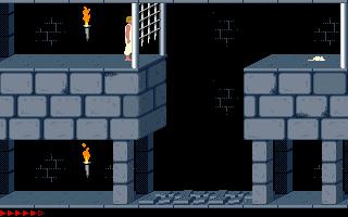 Prince Of Persia (PC)  © Brøderbund 1989   18/25
