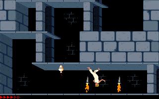 Prince Of Persia (PC)  © Brøderbund 1989   20/25