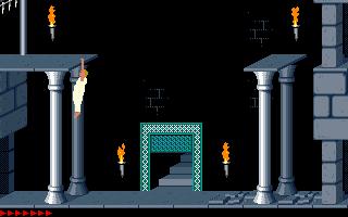 Prince Of Persia (PC)  © Brøderbund 1989   21/25