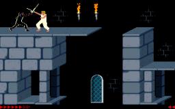 Prince Of Persia (PC)  © Brøderbund 1989   2/25