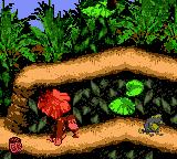 Donkey Kong Country (GBC)  © Nintendo 2000   2/3