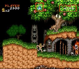 Super Ghouls 'N Ghosts (SNES)  © Capcom 1991   3/3