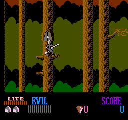 Wizards & Warriors (NES)  © Acclaim 1987   2/3
