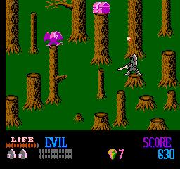 Wizards & Warriors (NES)  © Acclaim 1987   3/3
