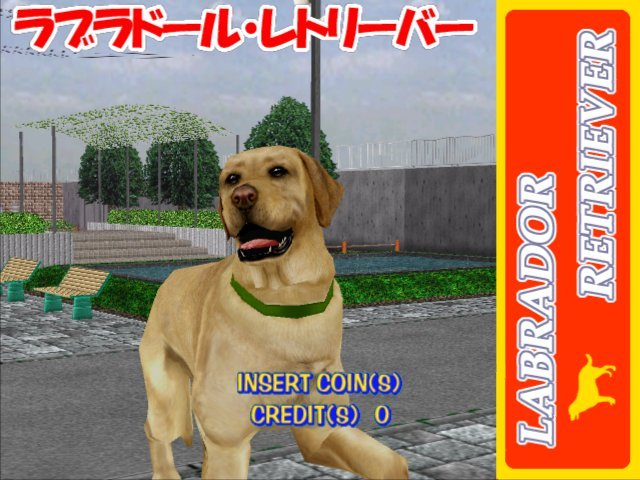 Walk The Dog (ARC)   © Sega 2000    5/5