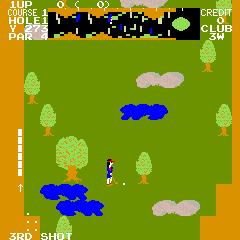 Tournament Pro Golf (ARC)  © Data East 1981   2/3