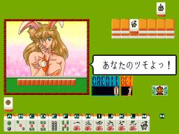 Final Bunny (ARC)  © Nichibutsu 1991   3/3