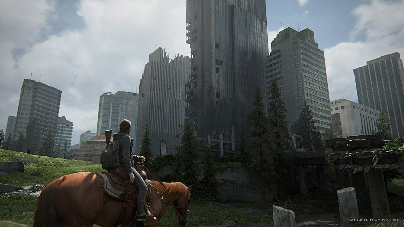 The Last Of Us: Part II (PS4)  © Sony 2020   4/4
