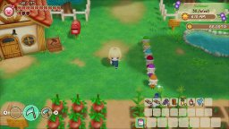 <a href='https://www.playright.dk/info/titel/story-of-seasons-friends-of-mineral-town'>Story Of Seasons: Friends Of Mineral Town</a>    44/99